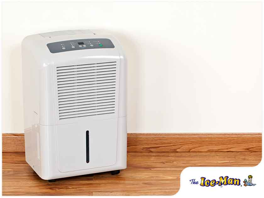 Reasons to Use a Dehumidifier This Summer
